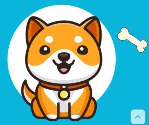 Baby Dogecoin क्या है? और क्यों है अभी चर्चा में