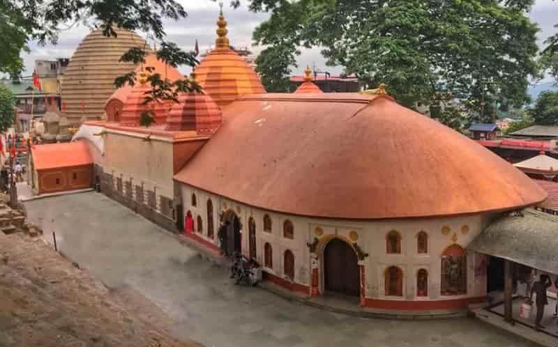 असम के कूल जिले, राजकीय पशु, पक्षी, फूल पेड़ और रोचक जानकारियां