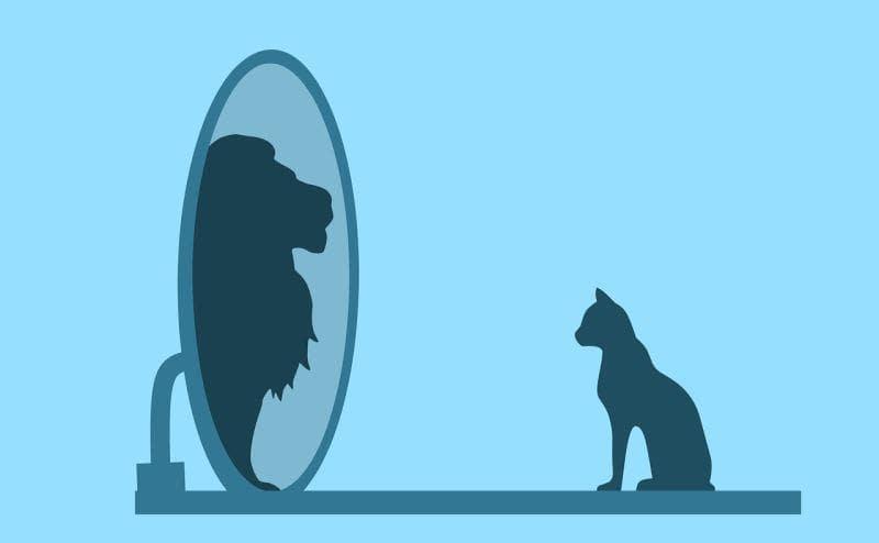 आत्मविश्वास कैसे बढ़ाएं आसान उपाय और तरीके